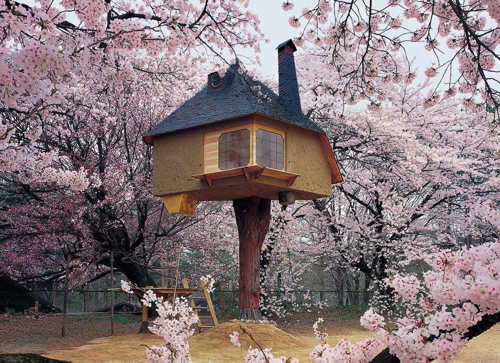 Tetsu casa del te
