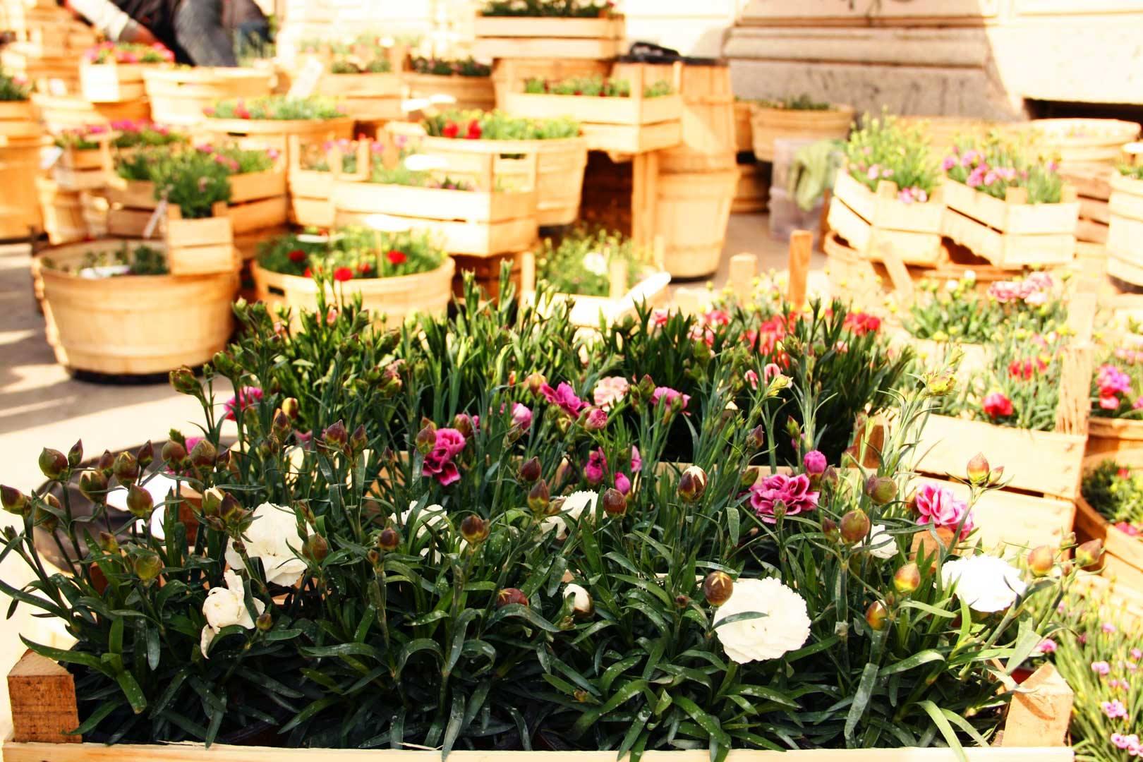 milano design week orti e giardini